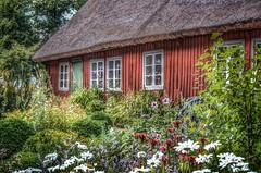 Cottage (Aránzazu Vel) Tags: cottage stockholm skansen countryside sweden sverige estocolmo campo architecture scandinavia cabaña casadecampo fiori flowers nature