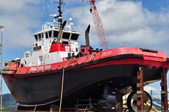 2017-07-23 Crowley Tractor Tug Goliah (2048x1360) (-jon) Tags: anacortes fidalgoisland sanjuanislands skagitcounty skagit washingtonstate washington salishsea pnw pacificnorthwest pacifcocean pacifc ocean guemeschannel dakotacreekindustries dci drydock towboat tug tugboat ship boat vessel crowley goliah imo9173496 wdd5908 marcoshipyardseattle a266122photographyproduction tractortug