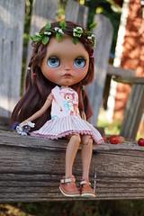 DSC02796 (Lindy Dolldreams) Tags: blythedoll chassycatcustom girl doll starrytaledolls jeds123