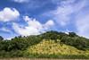 Remakri, Thanchi Upazila of Bandarban (Zakir_Hossain) Tags: remakri thanchi bandarban sangu landscapes sky green hilltracts hill জুম বান্দারবান বাংলাদেশ bangladesh beautifulbangladesh lovelybangladesh tavelbangladesh tourbangladesh landscapebangladesh tourisumbangladesh amazingbangladesh outdoor nikon nikonlove naturephotography zakir zakirhossain canvasofcolor nature photo image photography photographs stockimage stock color serene tree chittagong explorebangladesh explorebd camera county