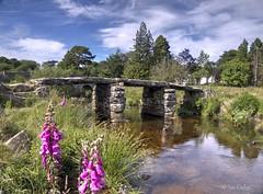 Clapper Bridge (Ian Gedge) Tags: england uk britain devon dartmoor water landscape postbridge flowers trees dart river bridge clapper