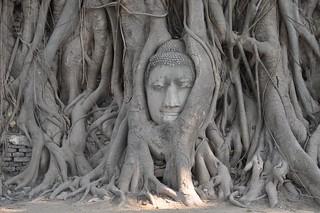ayutthaya - thailande 19
