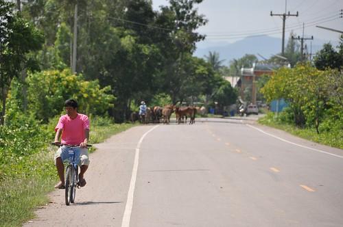 parc national sam roi yot - thailande 73
