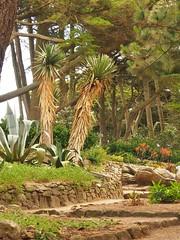 07.06.2017 - Batz, jardin Georges-Delaselle (30) (maryvalem) Tags: france bretagne finistère îledebatz alem lemétayer alainlemétayer