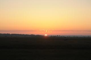 Sonnenuntergang im Börmerkoog; Börm (9)