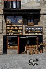 le chien de l'épicier (jean-marc losey) Tags: espagne españa catalogne catalunya castellardenhug épicerie chien village d700 croissantgéant