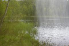 Blury (R.Solberg) Tags: hestmarkdammen blury nature