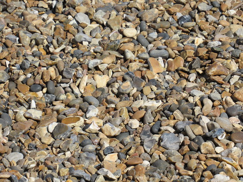 Tuesday, 18th, Beach pebbles IMG_1526