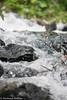 Wasserschall (derthueringer1966) Tags: berge fujixe2 groskirchheim heiligenblut hohetauer juli2017 kärnten marcel mythos urlaub wasserfall wasserschall berglauf xf55200mm xf56mmr12 österreich