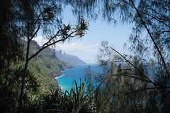 Crazy Na Pali Coast Kauai, Hawaii (Oliver Raatz) Tags: jungle colors inhalt hawaii kauai nature