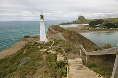 Castle Point lighthouse since 1913 (T Ξ Ξ J Ξ) Tags: newzealand wellington castlepoint d750 nikkor teeje nikon2470mmf28