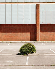 (Mark Greening) Tags: bristol horfield plant building england unitedkingdom gb