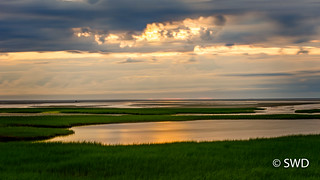 Approaching Sunset at Paines Creek