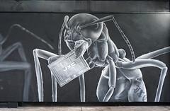 JXC (surreyblonde) Tags: streetart grasffiti cans spray walls croydon uk artsquarter croydonstreetart rise sony a6000 cr0 urban jxc ant insect