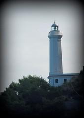 Faro  - Cefalù (dona(bluesea)) Tags: faro lighthouse alberi trees cefalù sicilia sicily
