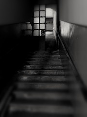 Stairway to... hell (VauGio) Tags: stairs scale abbandonato noone decadence abandonedplace huawei p10 leica