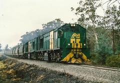 Near Conara Junction (andrewsurgenor) Tags: locomotive engine transport diesel train railway railroad rail railfan tasmania australia ee englishelectric an tasrail