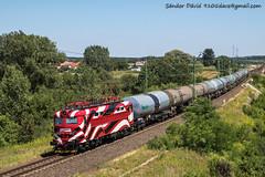 2017.07.29   242 284-8   Batyk (Davee91) Tags: petrolsped tanker train canon güterzug freighttrain zug tehervonat maszekvasút privatrailway translog