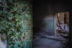 IMG_1716 (The Dying Light) Tags: hauntedisland povegliaisland urbanexplorationphotography urbanexploration urbanexploring 2017 abandoned asylum canon decay horror hospital italy poveglia urbex venice
