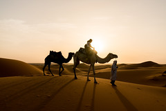 Sahara Sundown (Quentin K) Tags: sahara morocco desert sunset sundown contrast color sand camel trek scenery light sun adventure travel