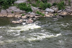 Great Falls NP ~ Potomac River (karma (Karen)) Tags: greatfallsnp potomac maryland usparks rivers rapids motion