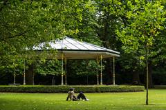 Ireland - Dublin - St Stephen's Green (Marcial Bernabeu) Tags: marcial bernabeu bernabéu ireland irlanda dublin dublín st stephen green park parque grass hierba cesped trees arboles