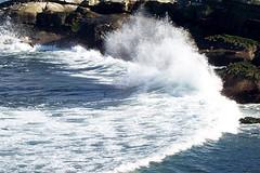 San Diego February 2008 06 (mainstreetmagic) Tags: california sandiego february 2008