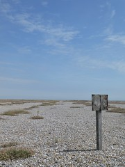 A notice board - but no message (stephenbrown390) Tags: noticeboard enigmatic enigma blank orfordness