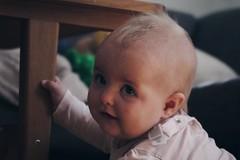 What? (Elisabeth Redlig) Tags: canon sweet sweden stockholm childhood baby toddler child elisabethredlig