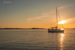 Summer time (Fredrik Lindedal) Tags: summer boat ocean visitsweden visitgothenborg thisisgbg gothenburg göteborg sunset sunlight clouds glow sailing coast nikon cachingthemoment lindedal seascape sea harmony calmness