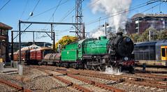 What lies ahead... (SJB Rail) Tags: c36 3642 steam trains railways railroads new south wales penrith blue mountains 150