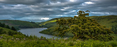 Overlooking Llyn Clywedog, Powys, Wales. (christaff1010) Tags: wales tree d750 landscape britain green lake water powys sky sunlight hills panorama uk clouds llanidloeswithout unitedkingdom gb
