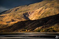 Hvannagil canyon ©DeschampsDamien (deschdam6@gmail.com) Tags: landscape wild mountains canyon river rivers colors hills contrast light travel escape hiking area sun fall iceland east earth clouds rock trees yellow brown green nature photography islande