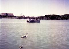 Ferry 'cross the Arun (Antony J  Shepherd) Tags: littlehampton olympuspenee2 penee2 ee2 halfframe