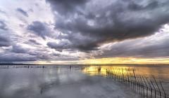 La tormenta / The Storm (carlosk75LM) Tags: flickrunitedaward albufera