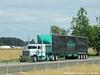 George Van Dyke Trucking Peterbilt 389, Truck# 21 (Michael Cereghino (Avsfan118)) Tags: gvd george van dyke trucking vandyke 21 truck peterbilt pete model 389 flatop flat top sleeper heavy haul hauler 4 axle quad curtain trailer