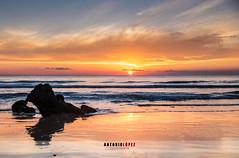 ATARDECER EN ROCHE (Antonio López Fotografía) Tags: atardecer roche cadiz calas verano sol nikon nikond750