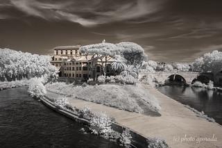 Roma - Tiber Island - Infrared