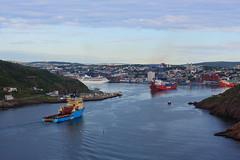 IMG_6390_Ships2 (daveg1717) Tags: ships maerskdispatcher oceanexsanderling cruiseshipinsignia stjohnsharbour stjohns thenarrows