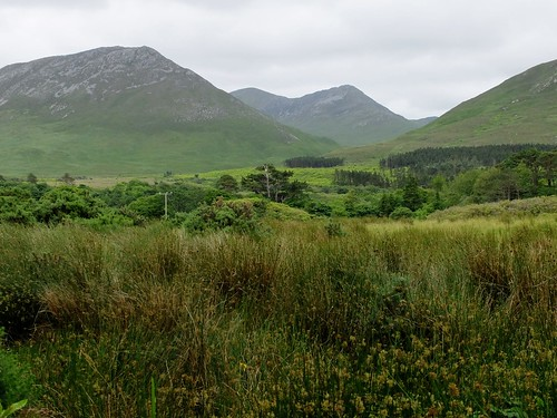 Connemara, Co. Galway