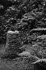 Sundial Lochalsh Woodland Walk (Man with Red Eyes) Tags: hp5 ilford m2 leicam2 summilux50mm pyrocathd v850 scotland kyleoflochalsh garden woodlandwalk lochalsh walk analog analogue silverhalide monochrome blackwhite bnw sunnysixteen film filmisnotdead filmtilidie softie rapidwinder sundial balmacara