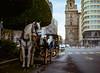 Carruaje - Málaga, Spain (abnercestari) Tags: 120 120film 645mmediumformat 80mm 80mmf19 ektar100 europe film kodak kodakektar100 malaga mamiya645 mamiya645pro sekor80mmf19 spain analog analogphotography mediumformatphotography