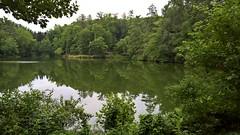 Asheville (heytampa) Tags: asheville biltmore biltmoreestate basspond pond lake