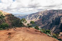 Waimea Canyon Kauai, Hawaii (Oliver Raatz) Tags: jungle colors inhalt hawaii kauai nature