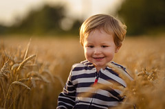 Cream Of The Crop (James W Atkins) Tags: boy toddler field sunset goldenhour gold golden darenth child smile happy evening late walk eve