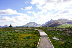 (petite.palette) Tags: sunshine meadows banff wanderlust world explore travel outdoors photography sky destinations hike hiking landscape beauty nature national park canada canadian rockies rocky mountains alberta