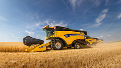 One, two, three... Yellow (- Olivier B. - Entre terres et ciel -) Tags: cx moisson newholland orge moissonneusebatteuse barley harvest sky canon 7d fisheye 815 olivierb entreterresetciel