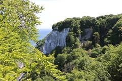 Viktoriasicht (julia_HalleFotoFan) Tags: rügen inselrügen jasmund nationalparkjasmund königsstuhl viktoriasicht buchenhochwald herthasee halbinseljasmund kreidefelsen