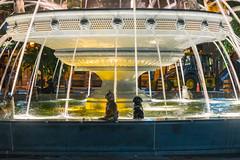 Berczy Fountain @ Night (A Great Capture) Tags: agreatcapture agc wwwagreatcapturecom adjm ash2276 ashleylduffus ald mobilejay jamesmitchell toronto on ontario canada canadian photographer northamerica torontoexplore summer summertime été 2017 city downtown lights urban night dark nighttime cityscape urbanscape berczy park fountain