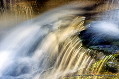 Mountain Falls (Gary Grossman) Tags: panthercreek creek whitewater garygrossmanphotography garygrossman giffordpinchotnationalforest waterscape waterfall cascades cascademountains mountainstream summer pacificnorthwest washington nature natural rural country countryside water flowingwater